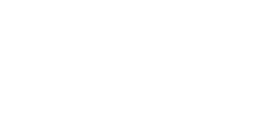 FABi logo hvit